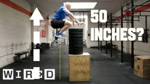 Why It's Almost Impossible to Jump Higher Than 50 Inches   WIRED
